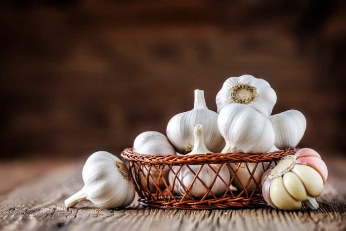 bawang putih untuk obat darah tinggi