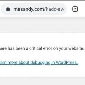 Artikel Error Setelah Update Plugin