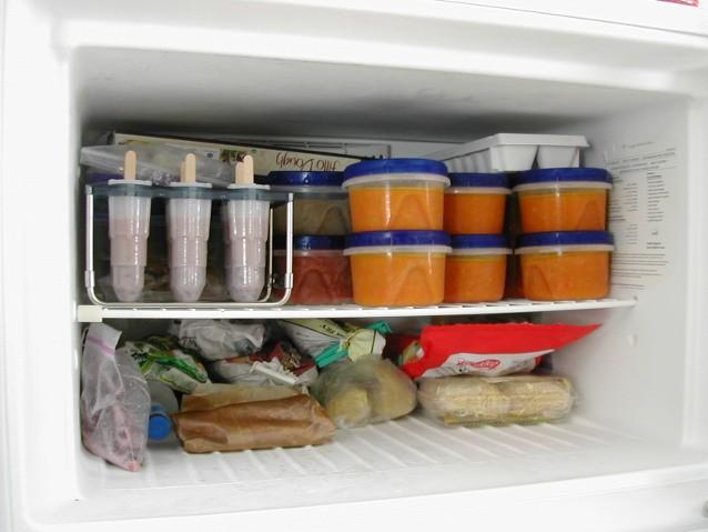 stok makanan di freezer