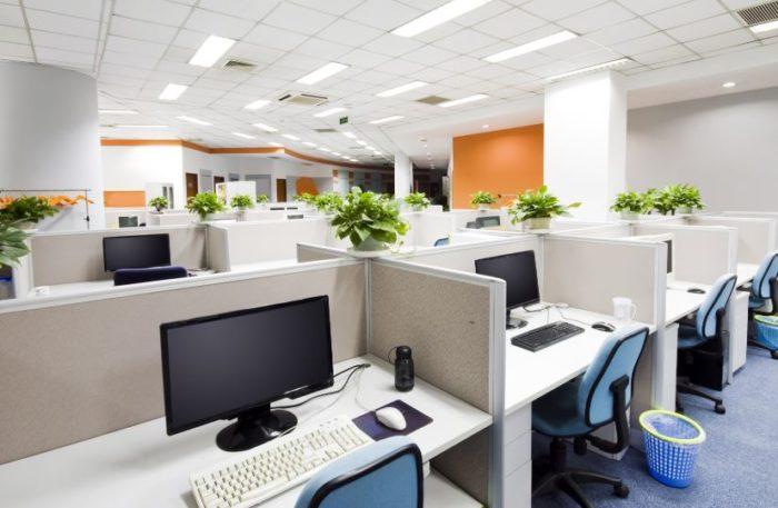 desain kantor go green