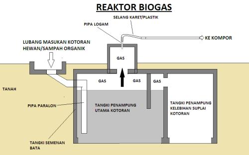 membuat biogas dari kotoran sapi
